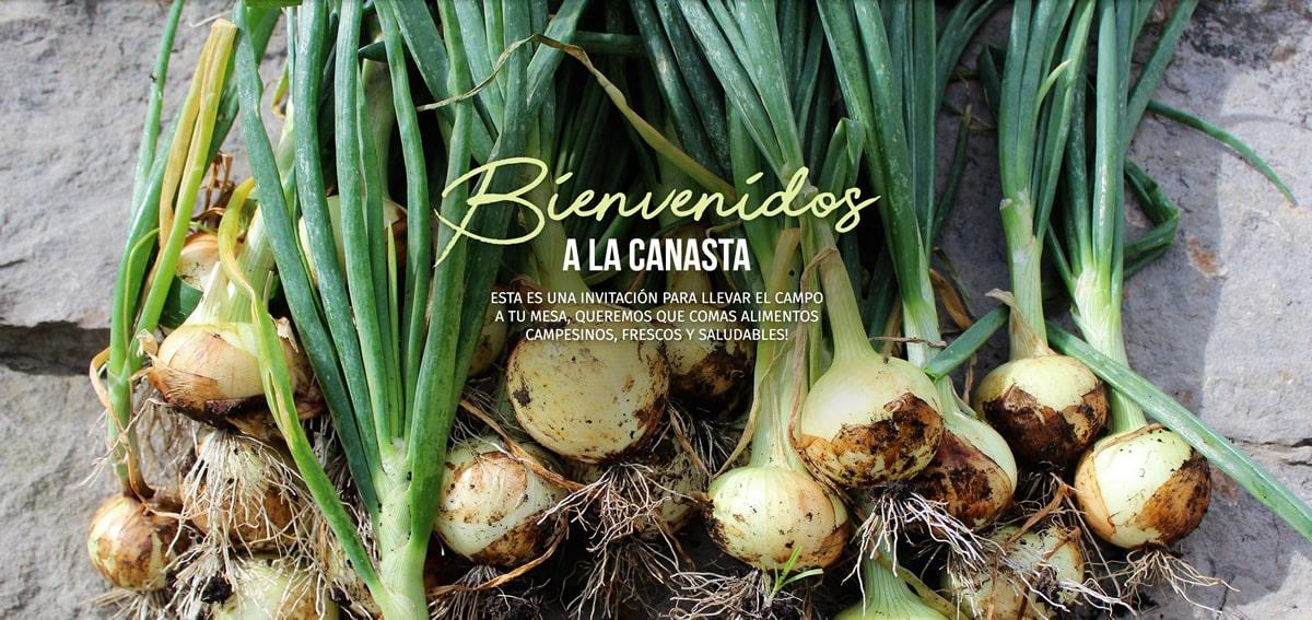 Mercado Agroecologico A Domicilio en Bogota